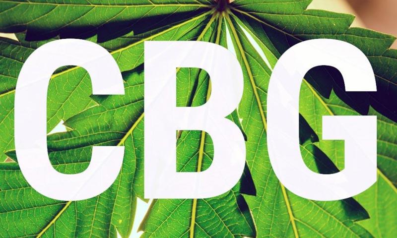 CBG (Κανναβιγερόλη): Όλα όσα χρειάζεται να γνωρίζεις