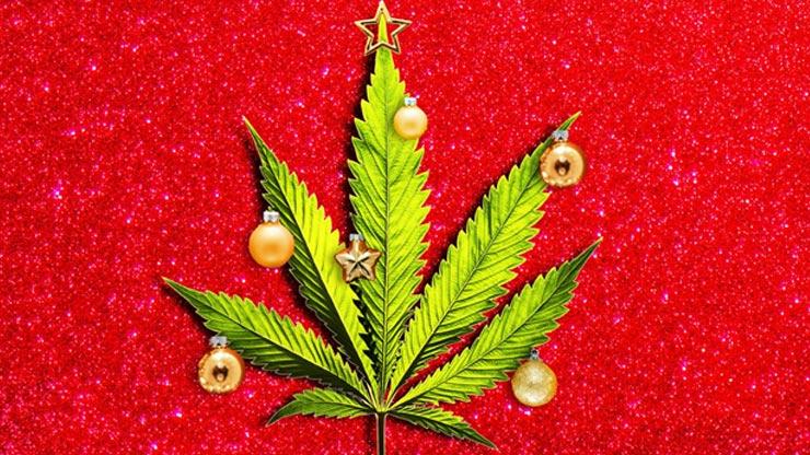 3 Xριστουγεννιάτικες Συνταγές Με Κάνναβη Που Θα Λατρέψεις