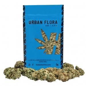 Urban Flora Άνθη Κάνναβης 12% CBD 2g – Hemp Motive